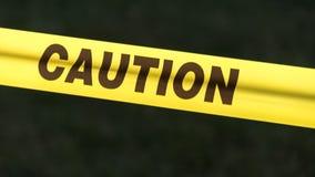 Woman carjacked at gunpoint in Ukrainian Village