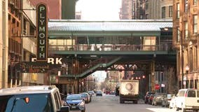 Man arrested after 'randomly' punching women in the face near Harold Washington Library: police