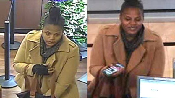 Reward offered in Naperville identity theft case
