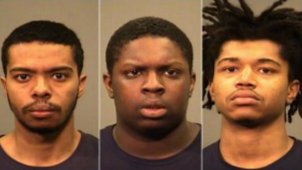 Men suspected of stealing from vehicles found sleeping with masks on in Joliet, police say