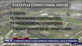Illinois inmate dies from COVID-19; dozens more sickened