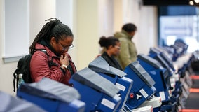Breakdown of Illinois' primary, from high court to U.S. Senate