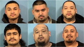 9 hit with weapon, drug charges in Addison gang bust