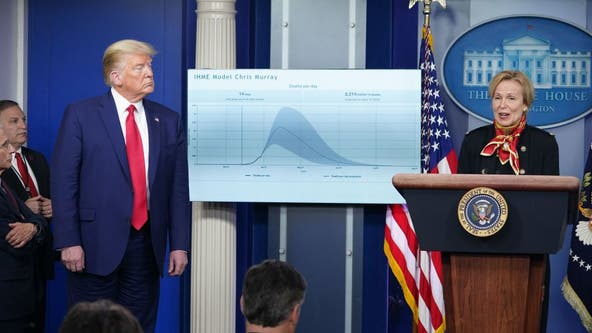 Trump: 'Very painful 2 weeks' ahead as White House projects 100K to 240K total US deaths from COVID-19