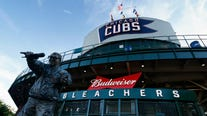 Woman hit in face by ball at Wrigley sues Cubs, MLB