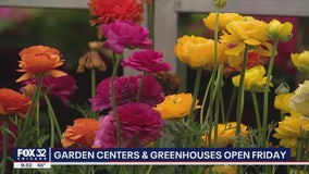 Illinois garden centers and greenhouses reopen Friday
