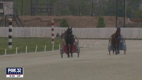 Illinois harness leaders push to begin horse racing again amid COVID-19 pandemic