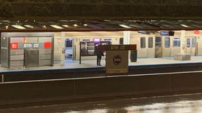 Man killed by Red Line train after being pushed onto tracks at 87th; suspect in custody