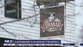 Lovin' Local: Capannari's keeps the ice cream coming one scoop at a time