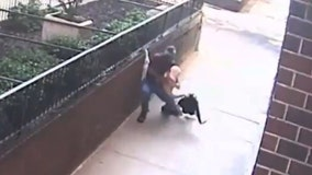 Disturbing video shows NYC thief choke, rob woman in broad daylight
