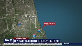 Girl, 3, shot in South Shore while riding in family's car