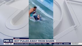 'Hey buddy, there's a shark right there!': Off-duty police officer pulls boy away from shark