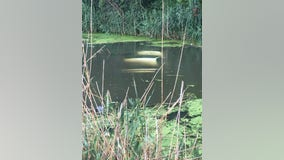 Empty car found submerged in South Deering drainage ditch
