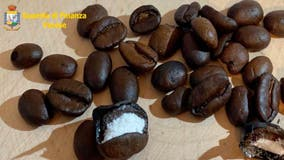 Police find cocaine smuggled inside of hundreds of individual coffee beans, addressed to movie mob boss