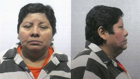 Suburban Chicago woman pleads guilty to labor trafficking