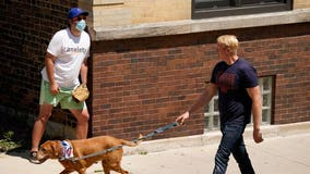 'We love baseball' Wrigley ballhawks stay on during pandemic