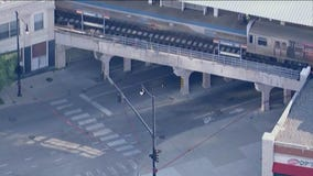 Man shot dead near Red Line station: police