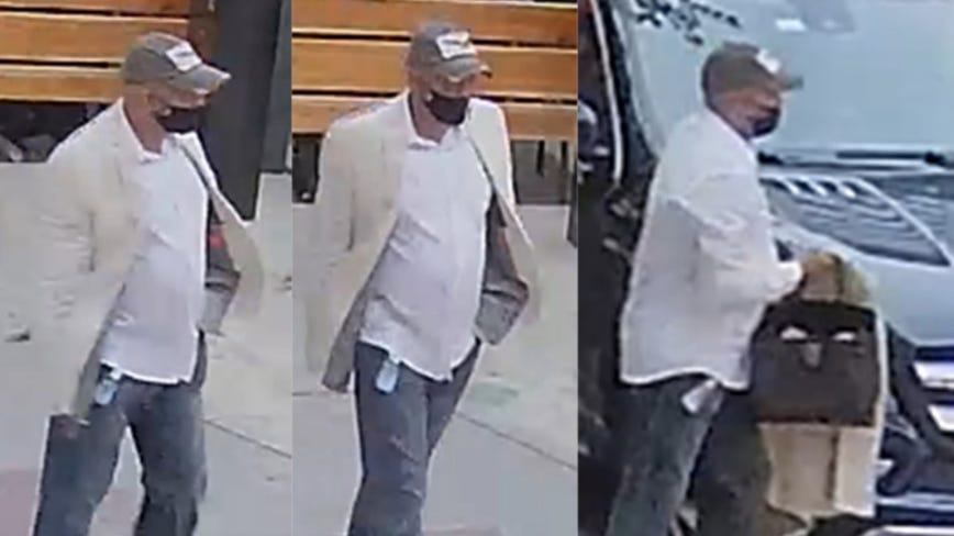 Suspect wanted in purse theft from outdoor diner on Near North Side