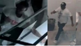 Police seeking to identify persons wanted for looting, burglary on the Near North Side