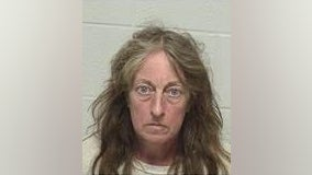 Suburban woman found with 28 dead cats faces animal cruelty charges: police