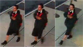 Police release photos of Back of the Yards purse-snatching suspect