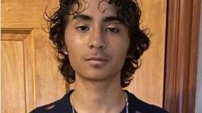 Boy, 15, missing from Sauganash