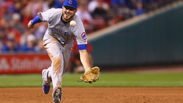Bryant held out of Cubs' lineup versus Brewers