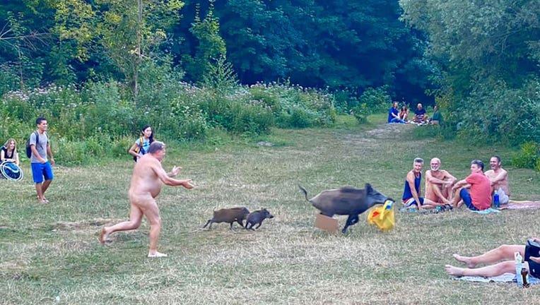 nude-boar.jpg