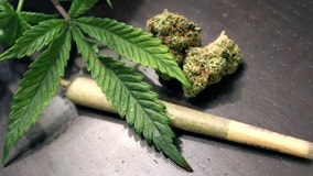 Marijuana decriminalization vote expected in House
