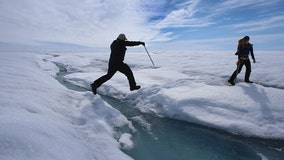 Huge chunk of Greenland's ice cap breaks off, evidence of rapid climate change, scientists say