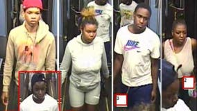 Suspects sought in Red Line robbery in Fuller Park