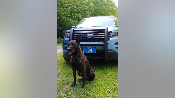 Police K9 tracks down missing Kindergartner lost in Maine woods
