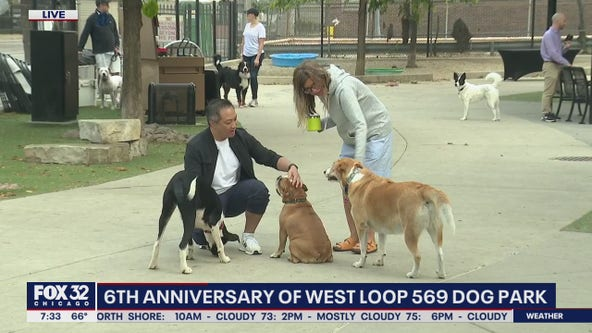 6th anniversary of West Loop 569 Dog Park