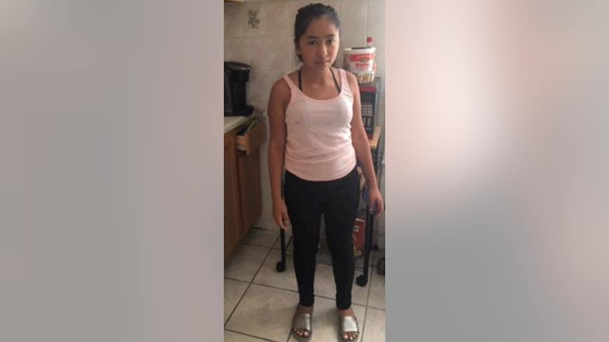 Girl, 12, missing from Brighton Park
