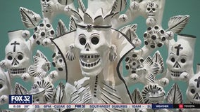 National Museum of Mexican Art wins multi-million dollar grant