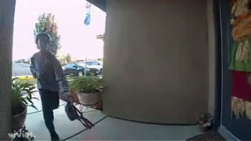 Video: Kid finds purse on top of car, makes sure it gets back to owner