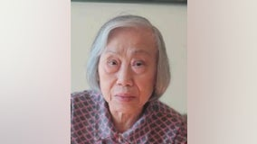 Woman, 82, missing from McKinley Park