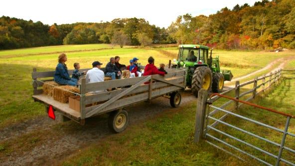 Rural Illinois hayride crash kills 1, injures 19, many of them children