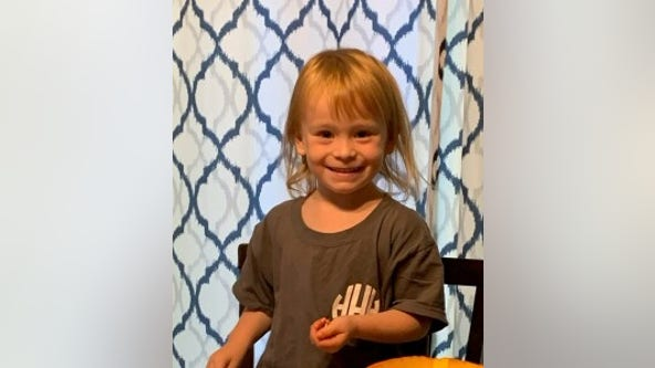 3-year-old girl missing in Crystal Lake found