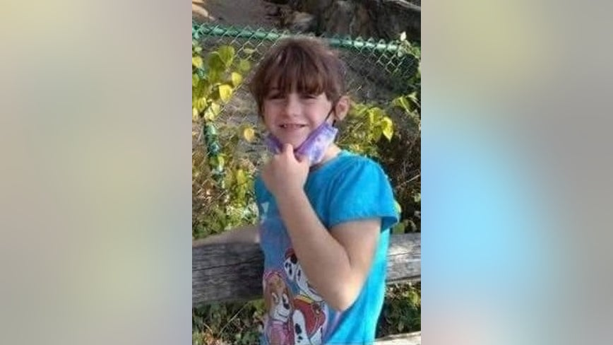 Amber Alert issued for missing girl, 5, who is believed to be in extreme danger: police