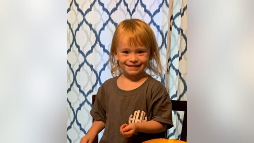 3-year-old girl reported missing in Crystal Lake