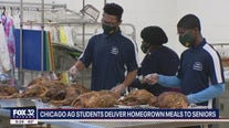 Chicago students provide homegrown Thanksgiving meals to senior citizens