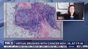 Brushes with Cancer pairs artists with people affected by cancer to create unique and healing art