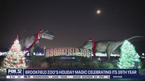 Brookfield Zoo's 'Holiday Magic' celebrating its 39th year