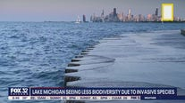 Environmental dangers a growing concern in the Great Lakes