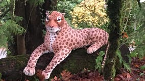 Deputies respond to cheetah sighting in Oregon that turned out to be stuffed animal