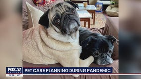 Veterinarians urge pet owners to have a care plan for animals amid pandemic