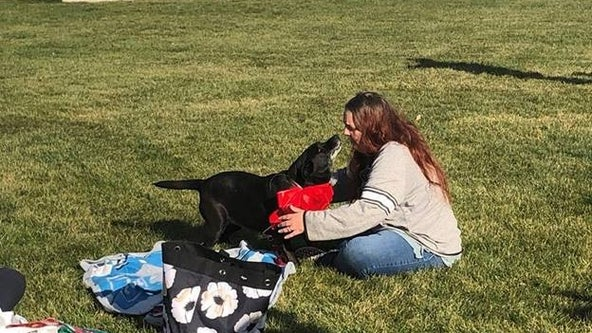 Dog and owner reunited in DuPage County after 3 years apart