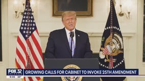 Illinois lawmakers call for removal of Trump: 'Dangerous' and 'loose cannon'