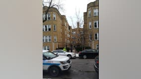 Woman, pets die in Albany Park fire
